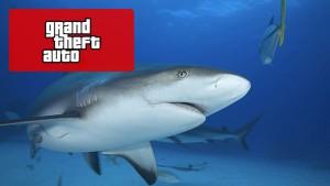 GTA Shark Cards